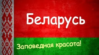 БЕЛАРУСЬ | ИНТЕРЕСНЫЕ ФАКТЫ О СТРАНЕ!