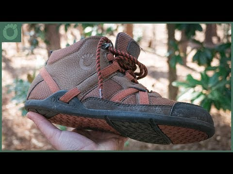 Minimalist Hiking Boots – The Xero Daylite Hiker
