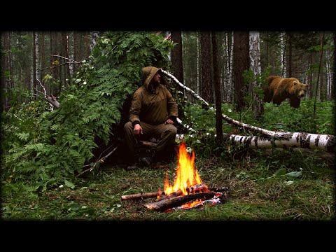 Повыживал с Медведями! Ночёвка в мокром лесу. Без снаряжения 24 часа. Игорь Лесник