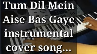 Tum Dil Mein  Aise Bas Gaye  Amit Kamble instrumental cover song by Sahil