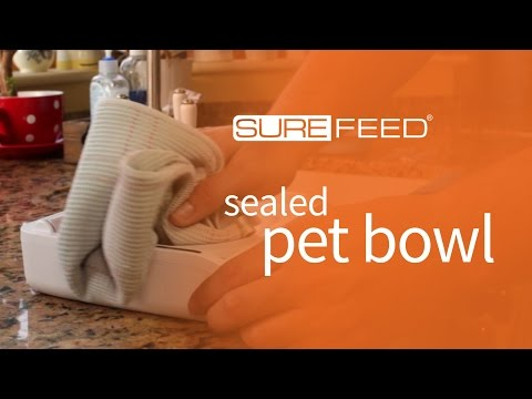 Cleaning the Sealed Pet Bowl