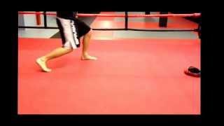 2 Puissantes Combinaisons pour le MMA