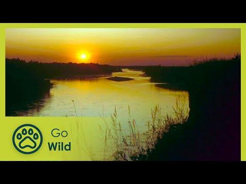 Dráva a békés folyó