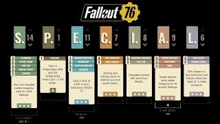 FALLOUT 76: The Ideal Solo Player Character Build!