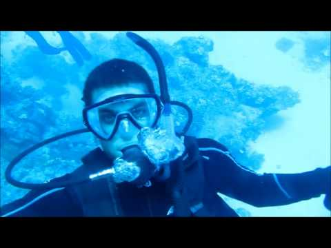 Learn to Dive Great Barrier Reef Video