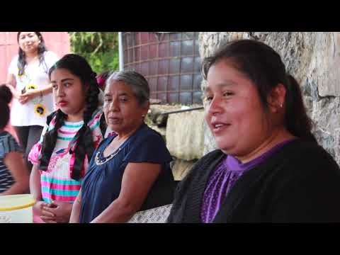 Fostering Indigenous Women Political Participation