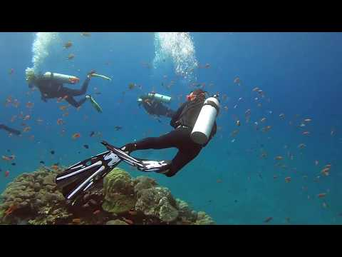 A day in the life of a Divemaster in Bali
