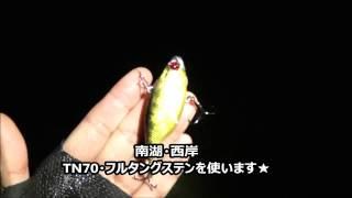 2016年・12月29日・琵琶湖南湖ジャッカルTN70で!