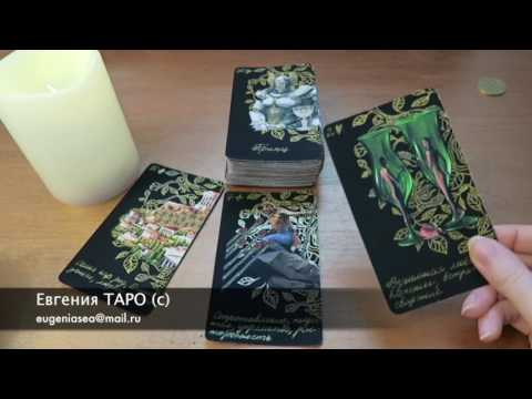 Скорпион кот женщина гороскоп на 2017