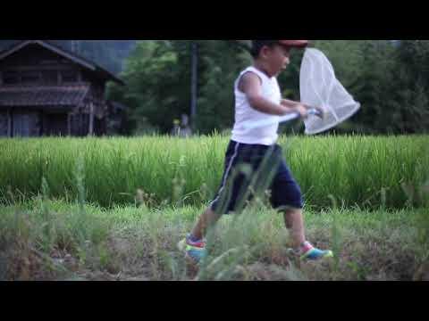 【白川村】SHIRAKAWA-GO _ promotional video