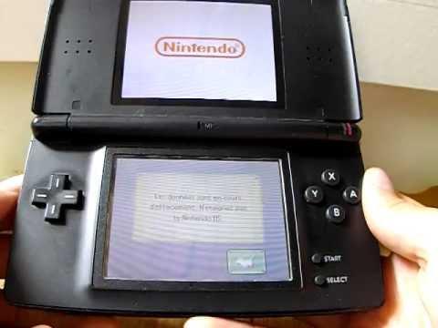 Palace pour Chiens Nintendo DS