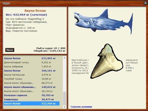 Русская Рыбалка 3.99 Акула белая - локации и точки заброса