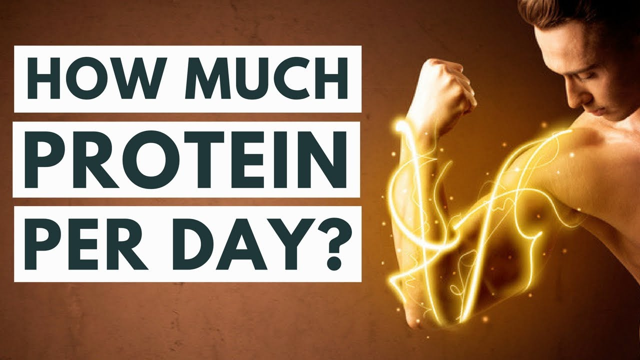 How much protein should we eat a day?