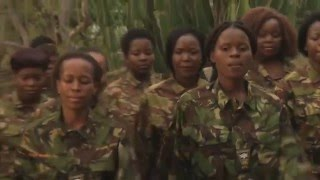 Helping Rhinos Black Mambas Documentary