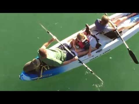 Sea Lion joins family on Santa Barbara kayak
