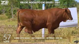 Coro 2370 b4