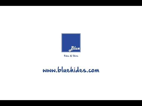 immagine di anteprima del video: Blue srl - Hides & Skins