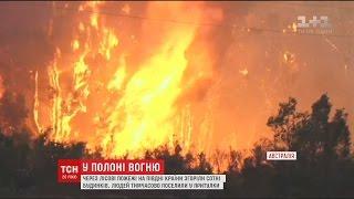 В Австралії вирують лісові пожежі