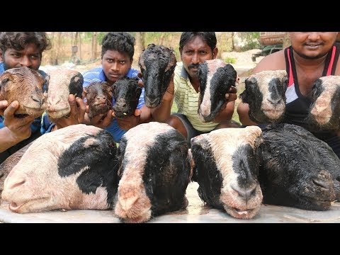 King of Goat Head Recipe | Traditional Lamb Head Soup By Country Boys