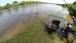 Ловля на москве реке поплавочной удочкой
