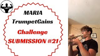 MARIA   TG Challenge Submission #21