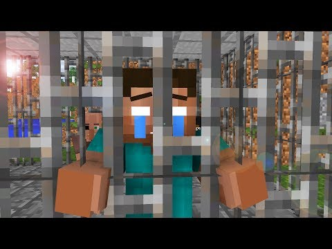 Steve Life 11  - Minecraft animation
