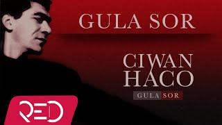 Ciwan Haco   Gula Sor【Remastered】 (Official Audio)