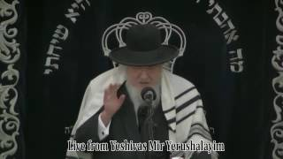 "Hespedim of Rav Moshe Schapira ZT""L"