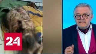 Медвежьи запасы: в Туве израненого мужчину нашли в медвежьей берлоге - Россия 24