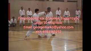JAPAN WADO KAI in Athens - Training with Sensei Shinji Kohata