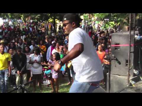 Afrofest 2011 DJ Magic Flowz Live On Stage