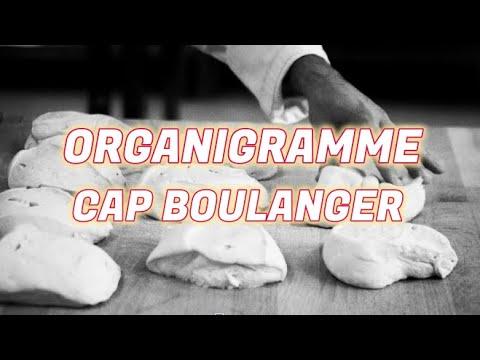 Boulangerie Pas à Pas N°10: Comment remplir un organigramme.  CAPboulanger