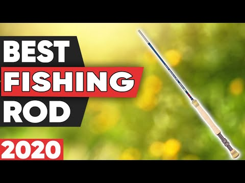 5 Best Fishing Rods in 2020
