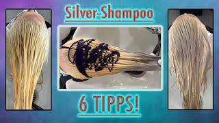 SILVER SHAMPOO - 6 TIPPS bei der Anwendung von No-Yellow Shampoo!