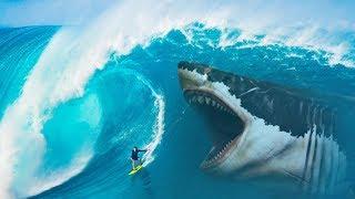 ¿Qué pasaría si los tiburones megalodón no se hubieran extinguido?