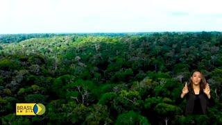 Satélite Amazonia-1 será lançado em 28 de fevereiro