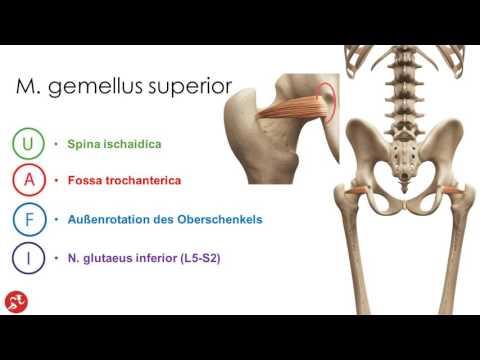 Wirbelsäulenbruch Behandlung ohne Operation Stavropol