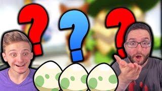 Gambar cover RANDOMIZER EGGLOCKE?!   Pokemon X & Y Randomizer Egglocke Co-Op   Part 1