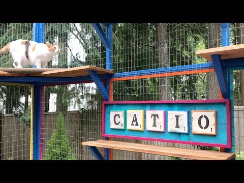 Catio Life:  COLORFUL CATIO MENAGERIE by Catio Spaces