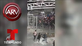 Tremendo zafarrancho en concierto de Banda El Recodo   Al Rojo Vivo   Telemundo