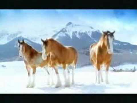 Budweiser Commercial (2006) (Television Commercial)