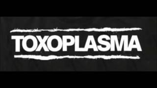 Toxoplasma  -  ZackZackZack