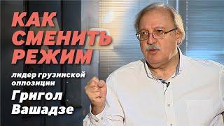 Как сменить режим. Лидер грузинской оппозиции Григол Вашадзе – Владимиру Федорину