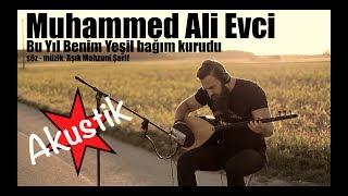 Muhammed Ali Evci  - U.H - Bu Yıl Benim Yeşil Bağım Kurudu (AKUSTIK)