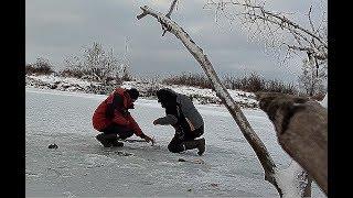 В ЭТИХ ДРОВАХ ПОЛНО КАРАСЯ!!!!! ВОТ ЭТО ПЕРВОЛЕДЬЕ!!! Балансир и мормышка по первому льду!