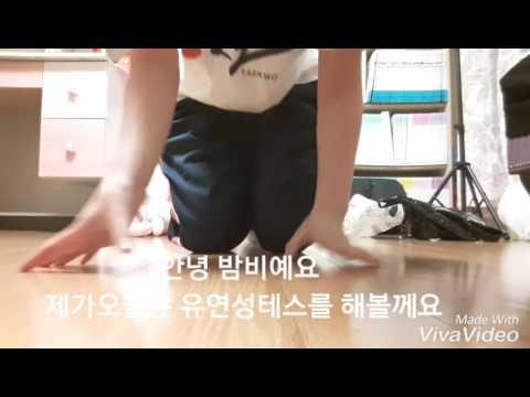 밤비의 유연성테스트 [1:47x360p]