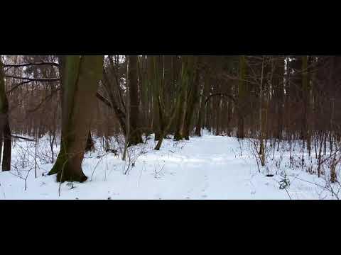 Park Ekologiczny zimą