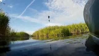 Рыбалка в дмитровском районе мельчевка