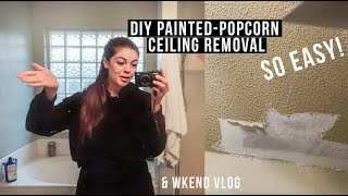 DIY PAINTED POPCORN CEILING Removal & Re-texturing | DIY Pool landscaping update | Wkend Vlog