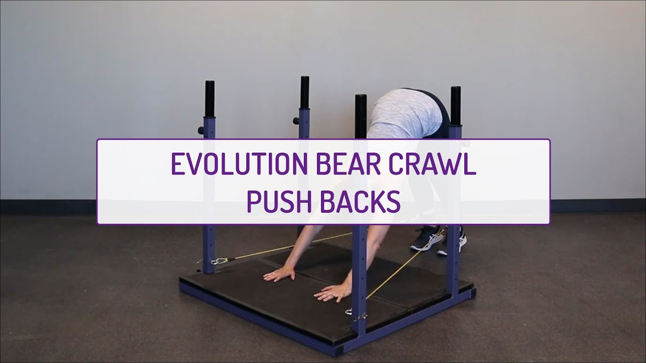Evolution Bear Crawl Push Backs